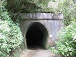 Rimutaka Incline Rail Trail Hike (34)