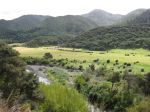 Rimutaka Incline Rail Trail Hike (8)