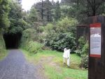 Rimutaka Rail Trail Bike Ride (10)